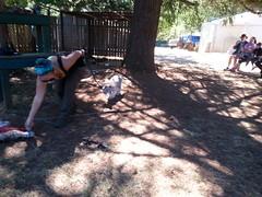 20150919_115738 (mjfmjfmjf) Tags: oregon zoo tigercub 2015 greatcatsworldpark