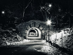 Inscope Arch at Central Park (Diego3336) Tags: nyc newyorkcity bridge winter light urban blackandwhite bw usa snow newyork ice nature architecture night stairs america lights lowlight stair arch nightshot outdoor centralpark manhattan tunnel urbannature lonely inscope inscopearch