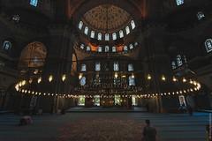 turkey_170715_4497