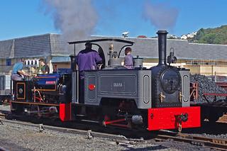 RD12151.  DIANA at Aberystwyth.