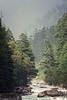 Parvati River (f/4) Tags: india manali cannabis himachal tosh kullu hashish pradesh charas parvati