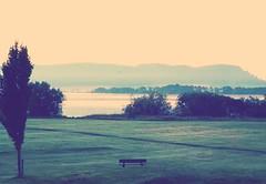 Cold seat. (B4bees) Tags: trees mist dawn scotland blog scenery seat earlymorning greenery footpath daybreak kinross lochleven kirkgatepark visiteastscotland