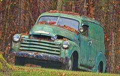 Chevy 3100 (creepingvinesimages) Tags: county truck outdoors virginia nikon antique greene panelvan htt chevrolet3100 centralvirginia d7000 topazadjust5 pse11