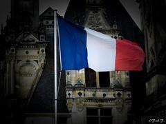 ...Tous Solidaires... (fredf34) Tags: paris france french flag pray solidarity ricoh franais drapeau frenchflag bataclan solidaire patriote solidarit drapeaufranais ricohpentaxk3 prayforparis jesuisparis jesuislafrance toussolidaires