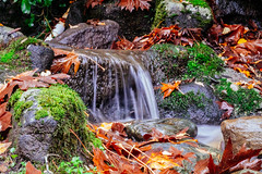 Running Water (Mario.Pesacreta) Tags: 50mm samsung f18 hexanon nx2000 dazzlingshots