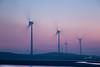 風的線條 (lgf55555(基福)) Tags: 浪漫 沙灘 海 黃昏 風車
