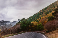 Parco Nazionale d'Abruzzo - Strade (Mary-Eloise) Tags: strade montagna nebbia autunno autumn fall autumncolors way curve parco abruzzo wald wow marialuisadicostanzophotography