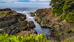 Wild Pacific Trail, Ucluelet (kensparksphoto) Tags: bc britishcolumbia vancouverisland ucluelet wildpacifictrail artistsloop