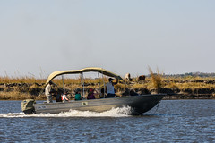 17 (Deve82) Tags: africa bw river landscape boats boat barca afternoon northwest fiume barche vehicles vehicle botswana chobe paesaggio kasane pomeriggio watervehicle veicoli veicolo watervehicles veicolidacqua veicolodacqua