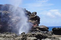 Honeymoon: Maui, Hawaii (luluandroodesign) Tags: hawaii honeymoon maui blowhole honoluabay nakaleleblowhole loverock kahekilihighway punalaubeach nakalel
