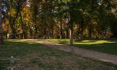 Parque El Retiro (Elisabeth Martnez Cnovas) Tags: madrid parquedelretiro elretiro plazamayor puertadelsol palacio de cristal jardines puerta alcala