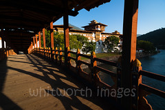 Punakha Dzong (whitworth images) Tags: stone dual building bridge large dzong white himalayas water travel bhutan punakhadzong imposing traditional government style secular fortress punakha river huge religious administrative architecture red monastery himalaya asia bhutanese punakhadzongkhag