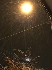 Unexpectedly Snowing Tonight (sjrankin) Tags: 23october2016 edited yubari hokkaido japan snow weather street streetlight fallingsnow