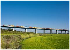 Alcáçer do Sal 16-08-15 (P.Soares) Tags: linha locomotiva linhas locomotivas 5600 comboio carga cp caminhodeferro contentores portugal portugalferroviário train trains tren transportesxxi terminalintermodal lusocarris