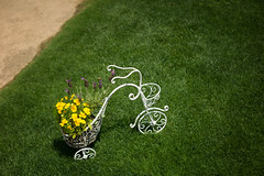 Flower vendor's bicycle. (lakeside_cat) Tags: snap flower shiga otsu      gardening flowerpot biwako otsukan biwakootsukan