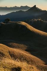 Mouvements (Pierrotg2g) Tags: pnr chartreuse paysage landscape nature alpes alps montagne mountain nikon d90