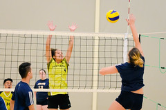 2016 Extramural Volleyball vs. Humber North-24 (centennial_colts) Tags: green scream 2016 2016ocaa extramural centennial colts centennialcolts college humber volleyball mens womens coed