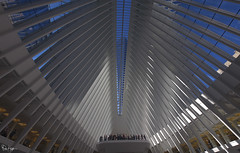 Inside the most Expensive Train Station Ever! (Karnevil) Tags: northamerica usa us newyork newyorkcity ny nyc manhattan lowermanhattan oculus transportationhub portauthorityofnewyork worldtradecenterstation oneworldtradecenter 1worldtradecenter freedomtower onewtc 1wtc 285fultonstreet september112001 911 skyscrapper 1776ft nikon d610 petekreps