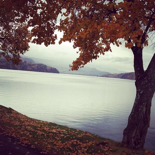 Fall #notodden