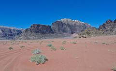 Wadi Rum # 3 (schreibtnix) Tags: reisen travelling jordanien jordan landschaft landscape wste desert wadirum felsen rocks himmel sky blau blue olympuse5 schreibtnix