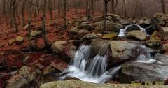 Riera de Passavets (Montseny) (Ernest Bech) Tags: catalunya parcnatural montsey river riu riera panoramic panoràmica tardor otoño autumn