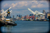 20150722-DSLR-A700-DSC00295-Edit-2.jpg (anders.acp) Tags: a700 july2015 anderscarlson washington 2015 andersphotos pugetsound july seattle city sony parks skyline westseattle sonya700