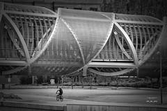 Puente Parrault 309_2016_9733 (José Martín-Serrano) Tags: proyecto proyecto366 proyecto365 365 366 madrid madridrio puente perrault ciclista paseo blancoynegro bn
