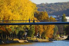 "Passerelle ""la Belle Ligeoise"" (Lige 2016) (LiveFromLiege) Tags: lige liege luik liegi lttich lieja wallonie passerelle labelleligeoise bridge pont boverie belgique"