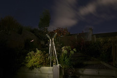 November 1st 2016 - Project 366 (Richard Amor Allan) Tags: lightpainting light paintingwithlight night torchlight torch sky cloud longexposure garden tree bush greenery green stars project366