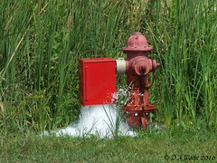 Open Hydrant (Picsnapper1212) Tags: water hydrant wilmington clintoncounty ohio