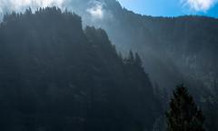 Rugged Landscape (maytag97) Tags: bluff cliff oregon maytag97 columbiagorge contrast shadow tree ridge mountainridge