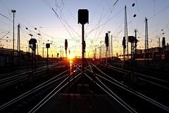 im Netz der Bahn (Staufen39) Tags: netz licht germany frankfurt bahnhof gleise abendsonne eveninglight sunset