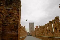 DSC_2171 (marcog91) Tags: urban verona italy river architecture outdoor around world discover amatorial italia city veneto romeo giulietta love