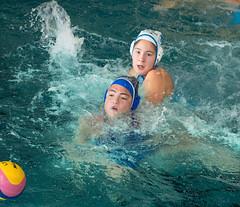2C040911 (roel.ubels) Tags: len euro league waterpolo sport topsport utrecht uzsc 2016 krommerijn women