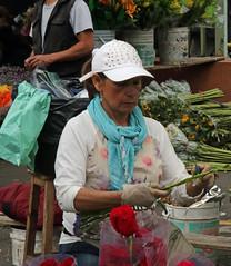 Paloquemao Flower Market (4) Bogot (Geoff Buck) Tags: flower colombia bogota market flowerseller paloquemao