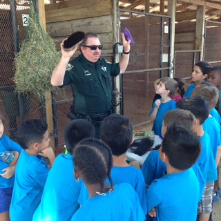 2015 - 1st Grade April 23, 2015 with Tim Farley at Clarcona Horsemen's Park