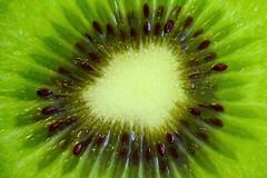 Frukt (Explore 2015-09-05) (nillamaria) Tags: macro green fruit frukt kiwi makro grön cvitamin fotosondag fs150906