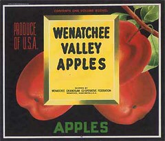 "Wenatchee Valley Apples • <a style=""font-size:0.8em;"" href=""http://www.flickr.com/photos/136320455@N08/21283910818/"" target=""_blank"">View on Flickr</a>"
