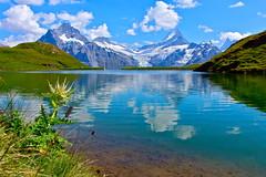 Bachalpsee... (sylviafurrer) Tags: mountainlake berneroberland bachalpsee