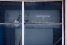 01.03.2006 sterreich Brixlegg. Rollgewichtswaage. Heute alles abgerissen (ruhrpott.sprinter) Tags: railroad train germany u2 deutschland austria tirol ic sterreich diesel outdoor eisenbahn zug 64 locomotive es fret taurus signal ruhr f4 freight innsbruck bb kv 139 metropole 189 ec lokomotive brixlegg 182 rola 1016 railion sprinter ruhrpott rattenberg gterzug 1144 wrgl oec 1116 1063 3288 lokomotion lokzug rollgewichtswaage cheminlefer