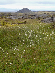 Hike zurück, Tour Inside the volcano Thrihnukagigur, Island