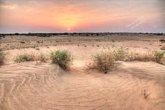Desert charisma (Ali:18 ( )) Tags: sunset desert memories saudi saudiarabia   jazan photomatix   jizan  sabya