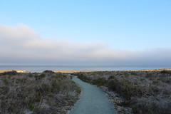(jessica wilson {jek in the box}) Tags: lososos wander beachwalking beachcombing 2015 montaadeoro aug15 bluffstrail goinwiththeagogos slolife