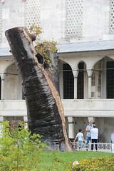 (Saud Al-Mutlaq) Tags: tree turkey huge sultanahmet hugetree