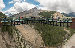 Glacier Skywalk (Dr_Drill) Tags: park bridge sky mountain canada mountains fall ice water field pine forest river waterfall nikon forrest walk rocky ab columbia glacier national alberta banff alta nikkor vr d800 icefield skywalk cantilever 1635 jaspar 1635br