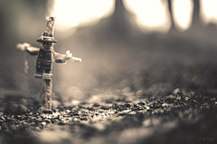 Crucified and left in isolation. (3rd-Rate Photography) Tags: blur canon toy actionfigure 50mm nikon lego florida scarecrow jacksonville 365 minifig minifigure toyphotography freelens 5dmarkiii lenswhacking earlware 3rdratephotography