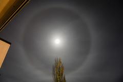 A moon halo