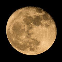 FullMoon_11_15_2016 139 (VinceFL) Tags: fullmoon lighthouse luna lunar manfrottotripod moon nature nikond7100 nikonmll3 outdoors saintsimonsislandga sky southern sunset tamron70300mmf456dild12autofocusmacro vincefl