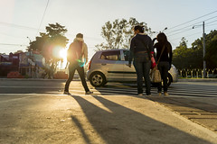 Respeto al Paso Cebra (sierra.oe87) Tags: luz sol sombra cebra usac peatn pasocebra