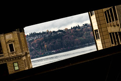 Quadrilateralism (jetcitygrom) Tags: seattle street city autumn trees windows sky abstract fall window water weather architecture clouds contrast canon landscape construction highway downtown moody shadows waterfront dynamic personal cloudy crane freeway portal angular somber elemental edifice 700d t5i